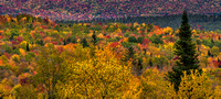 Abundance of Colors, Ridge Road, Franconia, NH