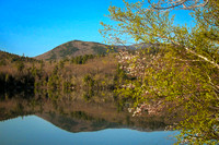 Spring at Mt. Monadnock, NH